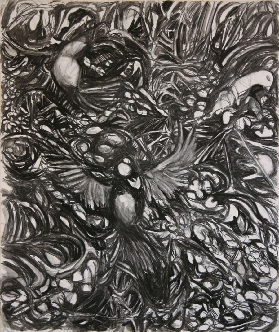 Look Down, #4, Birds