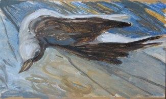 Dead-Cuckoo
